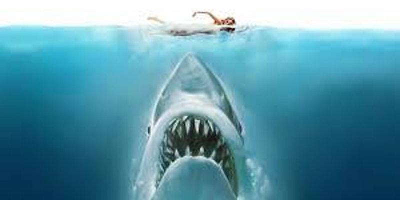 Screenplay Analysis: Jaws